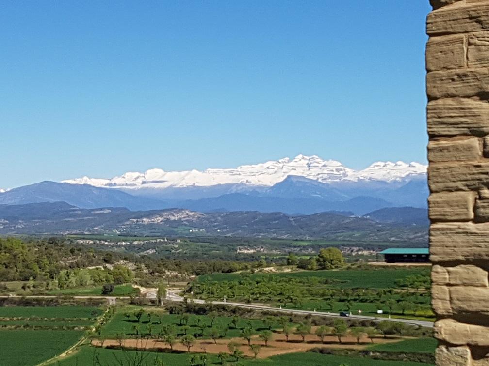 vistas torre